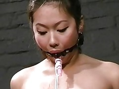 kokos japanese fetish chinese infant tortures tounge asian bdsm bondage